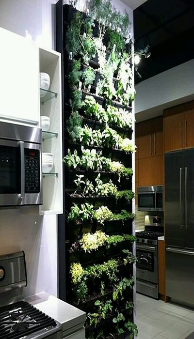 green wall decoration