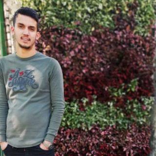 مهندس محمدرضا سلطانی