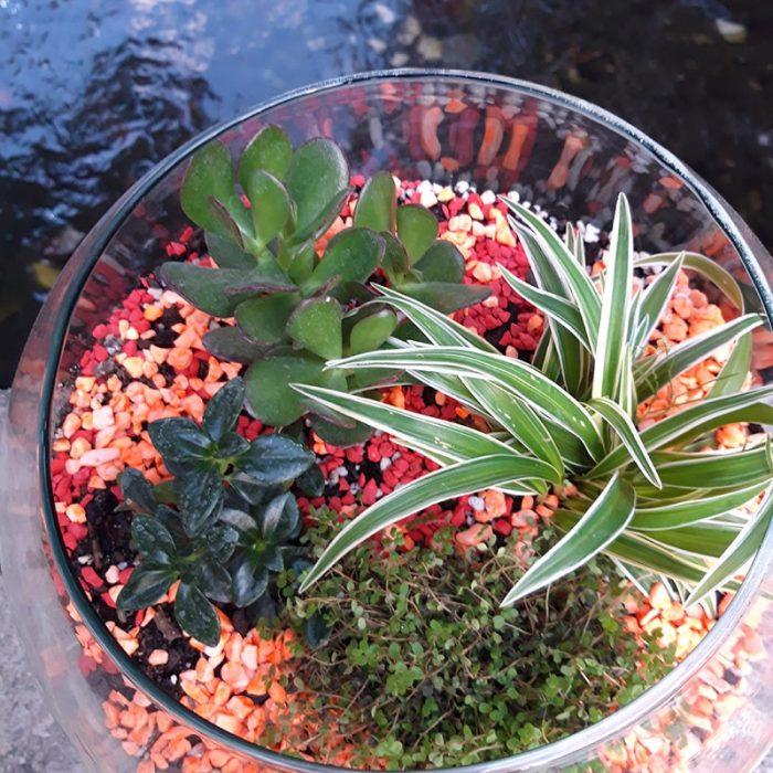 باغ شیشه ای
